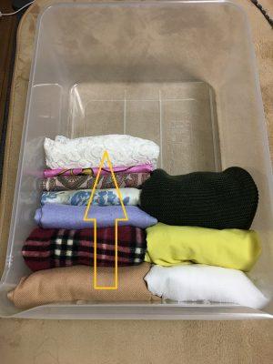 衣装ケースに入れて洋服を収納する