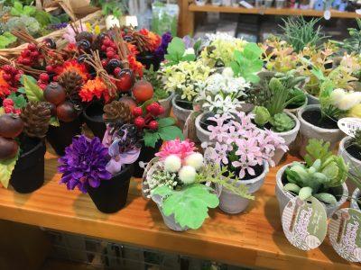 100均セリアの観葉植物。造花なのに本物と見間違えてしまうほどにきれい!これは小さいタイプ